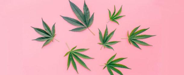 8 Surprising Beauty Benefits of Cannabis