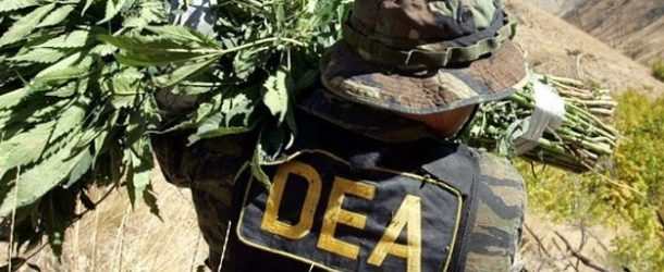 DEA Denies Governors' Petitions To Reclassify Marijuana For Medical Use